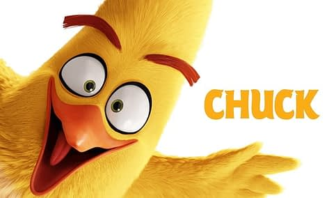 The Angry Birds Movie chuck